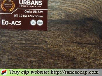 Sàn gỗ Urbans 829