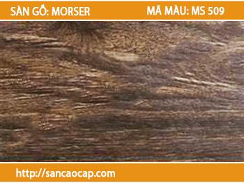 Sàn gỗ Morser MS 509