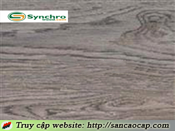 Sàn gỗ Synchro 2741