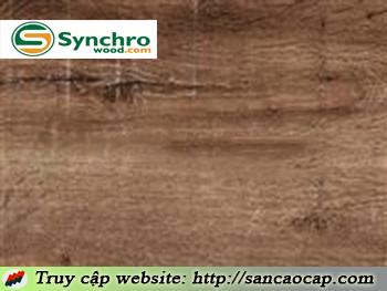 Sàn gỗ Synchro 2918