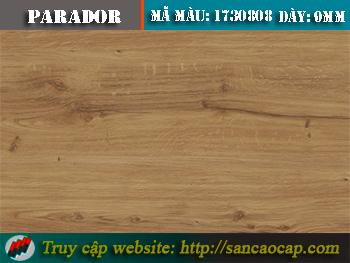 Sàn gỗ công nghiệp Parador 1730808