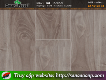 Sàn gỗ Smartwodd 2923